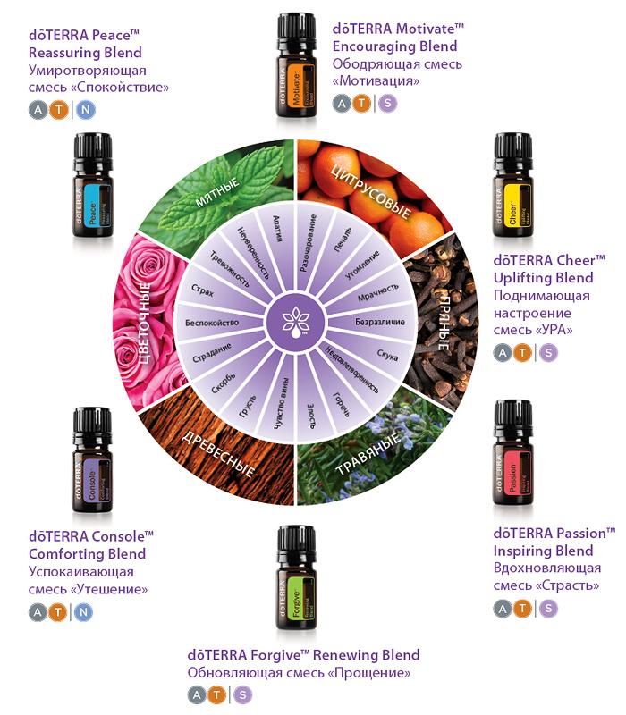 Emotional Aromatherapy Wheel